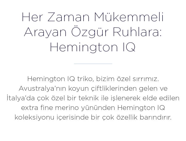 Hemington IQ